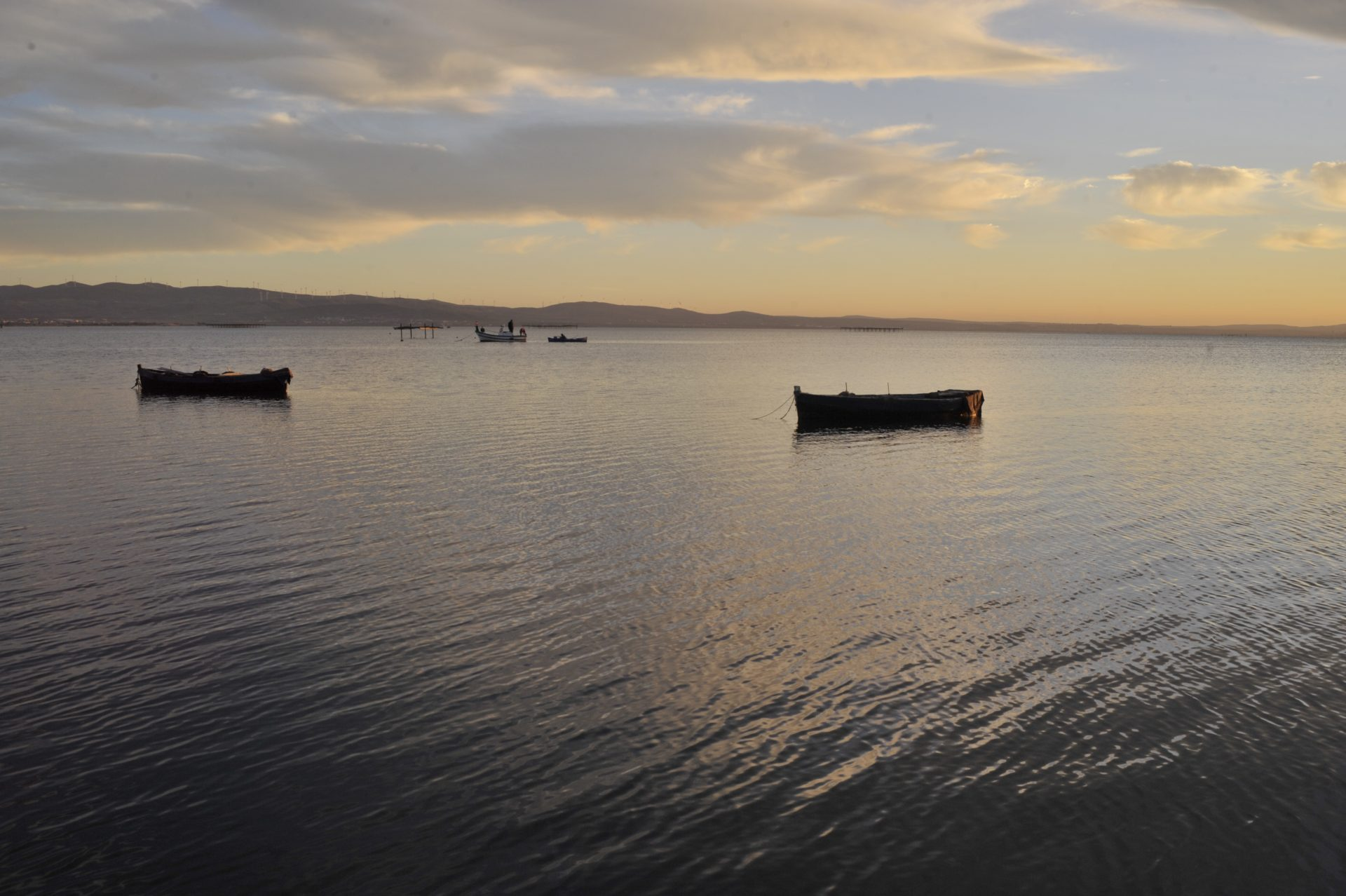 Integrated Programme for Protection of the Lake Bizerte