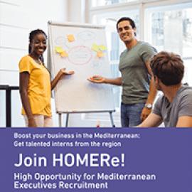 Leaflet_HOMERe
