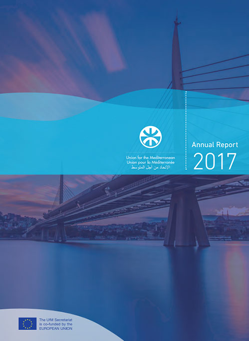 UfM Annual Report