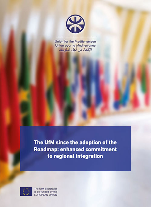 The UfM since the adoption of the Roadmap