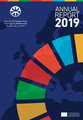 UfM Annual Report 2019