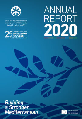 UfM Annual Report 2020